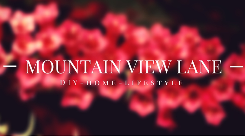 Mountain View Lane